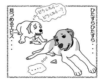 13032017_dog3.jpg