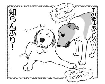 13032017_dog6.jpg
