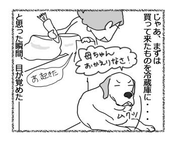 13042017_dog4.jpg