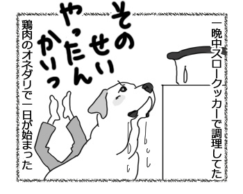 14032017_dog5.jpg