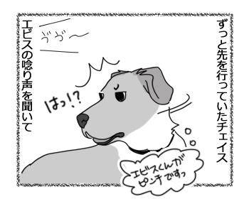 羊の国のラブラドール絵日記シニア!!「チーム男子」2