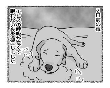 16032017_dog1.jpg