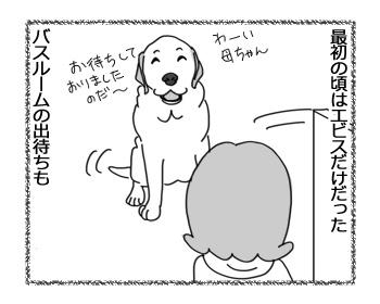 17022017_dog2.jpg