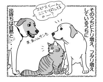 17022017_dog3.jpg