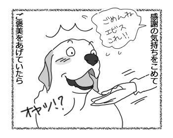 17042017_dog3.jpg