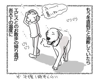 18042017_dog1.jpg