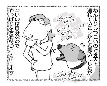 18042017_dog4.jpg