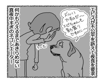 20032017_dog4.jpg