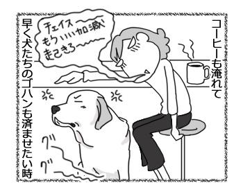 21032017_dog3.jpg