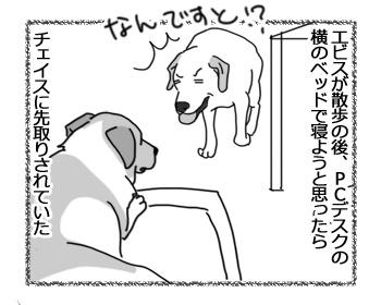 22032017_dog1.jpg