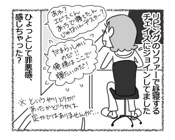 22032017_dog6.jpg