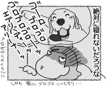 23032017_dog4.jpg