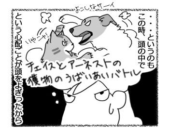 24022017_dog3.jpg
