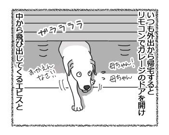 27022017_dog1.jpg
