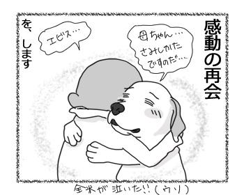 27022017_dog2.jpg