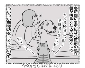 28032017_dog1.jpg