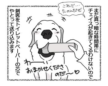 28032017_dog2.jpg