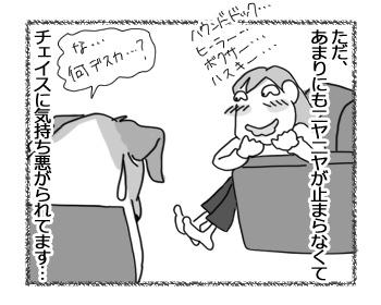 30032017_dog1.jpg