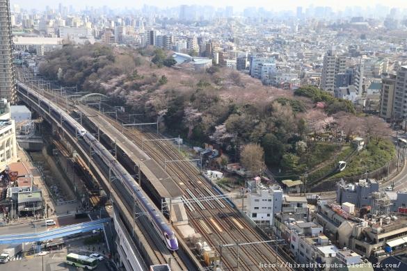 E3&E2系新幹線と飛鳥山ーSN