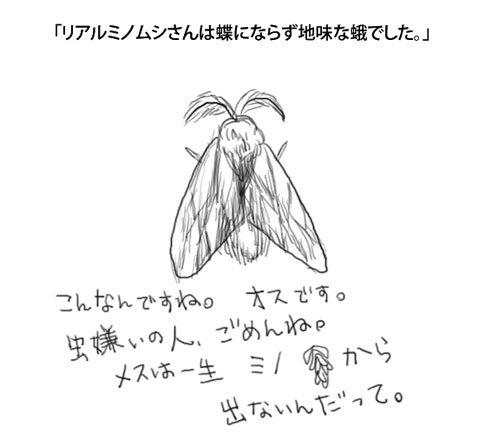 0313hakushumino.jpg