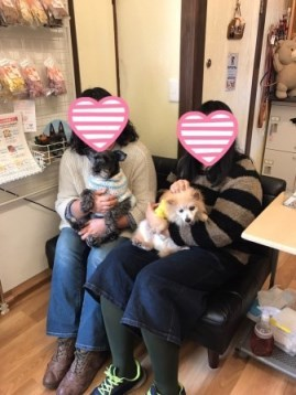shifa014.jpg