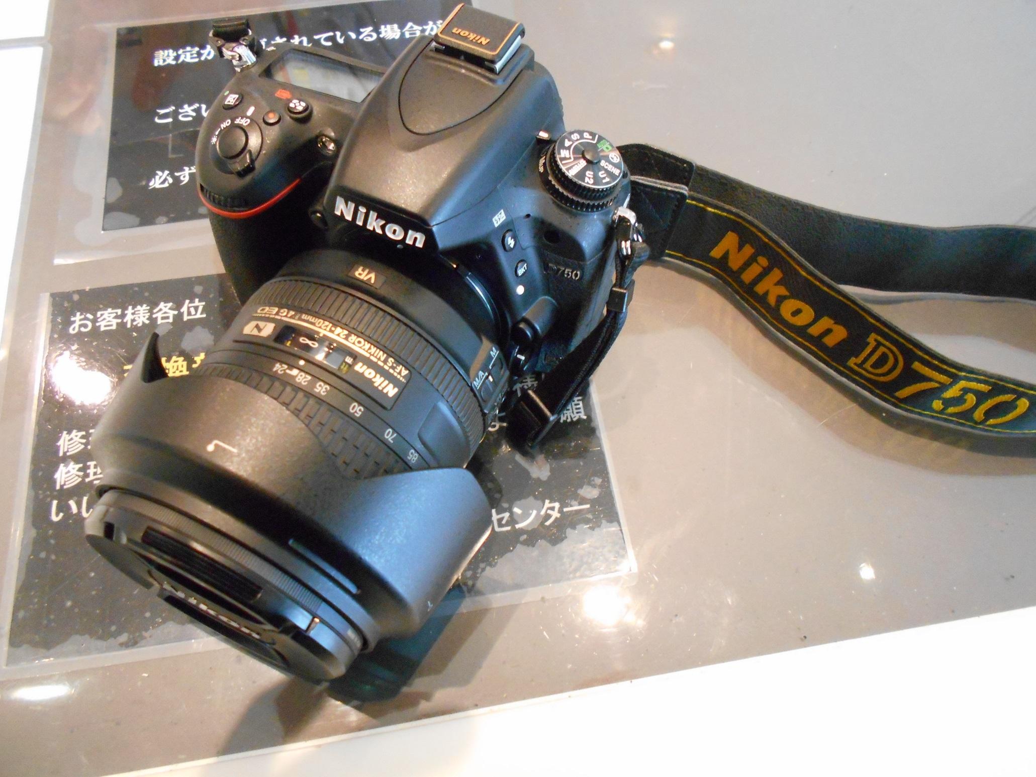 DSCN1045.jpg