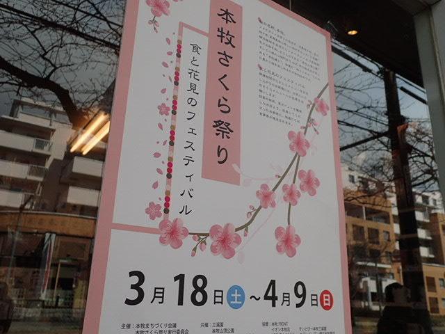 本牧さくら祭り (2)