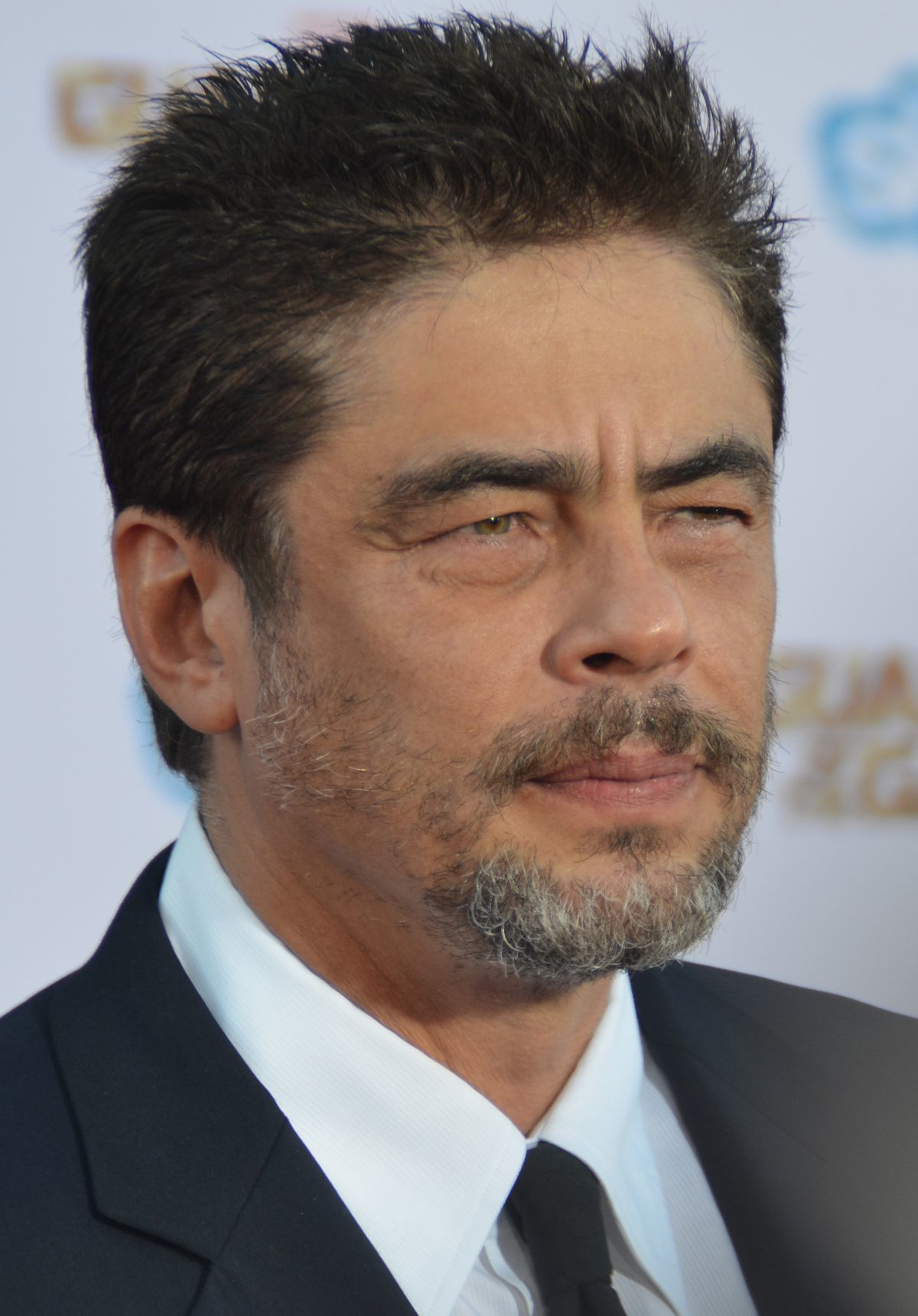 1200px-Benicio_Del_Toro_-_Guardians_of_the_Galaxy_premiere_-_July_2014_(cropped).jpg