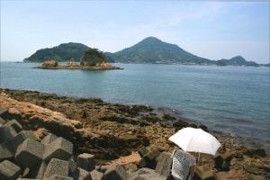 ターナー島ブログ (300x200) - コピー