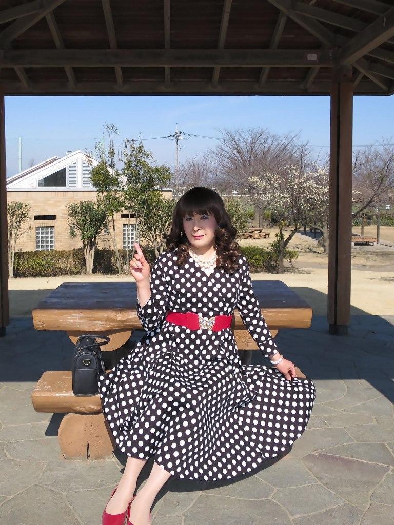ドット柄ワンピ公園(5)