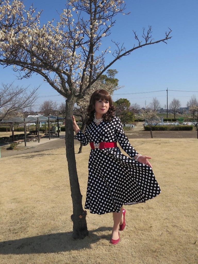 ドット柄ワンピ公園(2)
