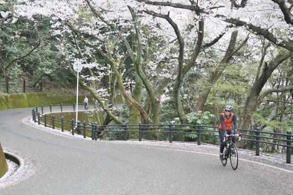 06 IMG_8324 自転車も(600x400)