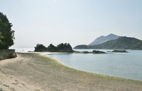 070 IMG_8449 茶臼山(600x386)