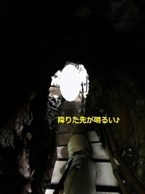 IMG_0379_convert_20170309214142.jpg