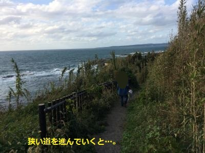 IMG_0388_convert_20170309214412.jpg