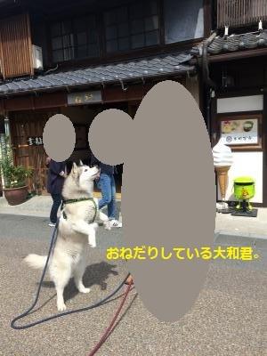 IMG_9591_convert_20170405201244.jpg