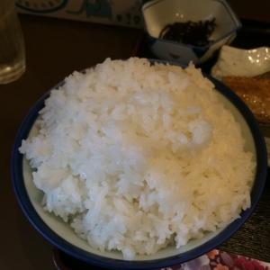 食べログ1 (403)