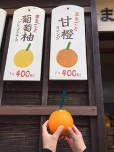 8 オレンジ