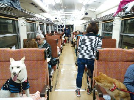ワンコ列車③縮小