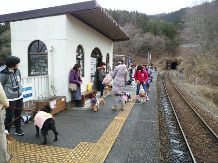 ワンコ列車⑥縮小