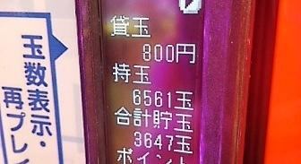 DSC_14208.jpg