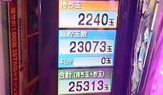 DSC_4433.jpg