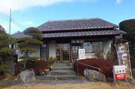 山茶花2 (2)