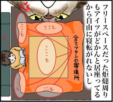 イリの怒り3
