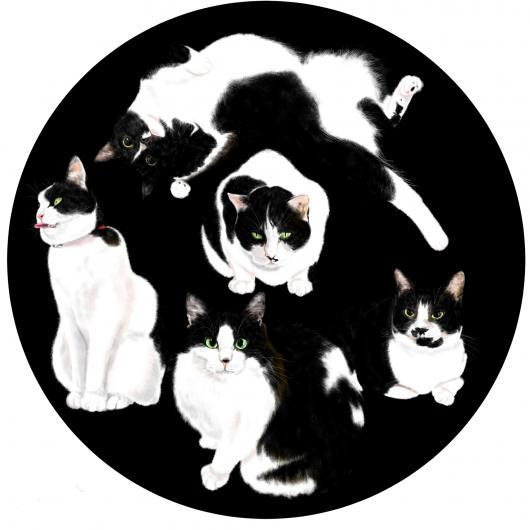 隠れている猫_convert_20170301160911