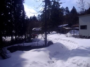 2,25雪景色