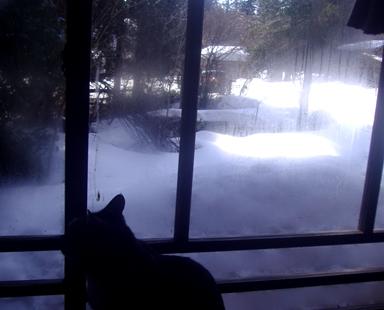 2,24雪景色
