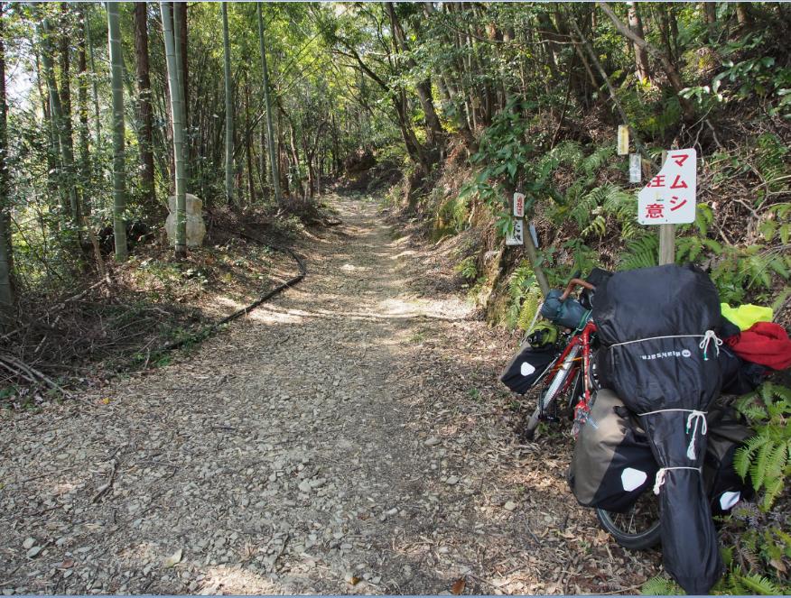 20150328 自転車旅1