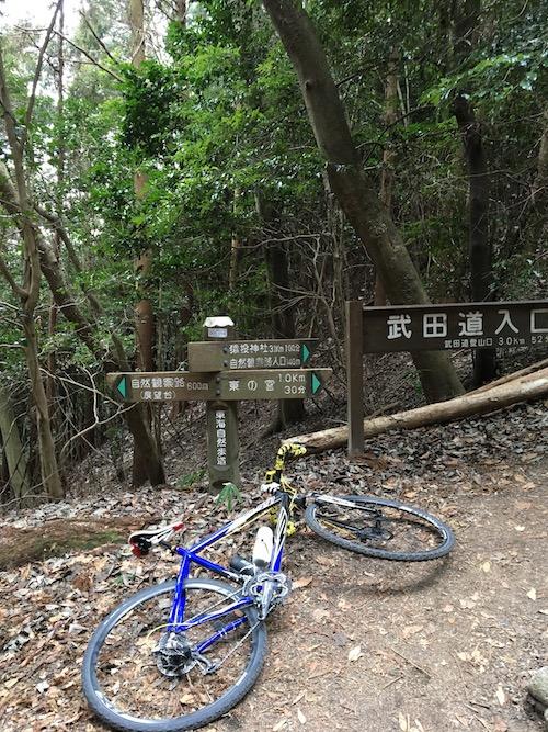 3 猿投神社林道IMG_4331