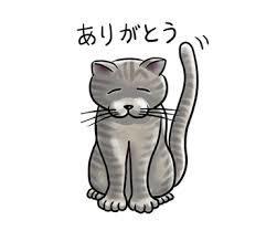 ありがとう猫